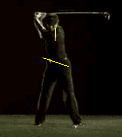 hip and shoulder turn tiger